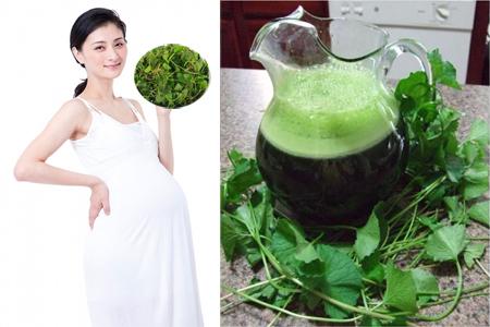 Phá thai bằng rau má